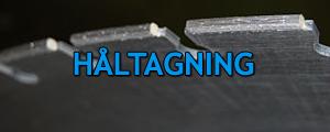haltagning